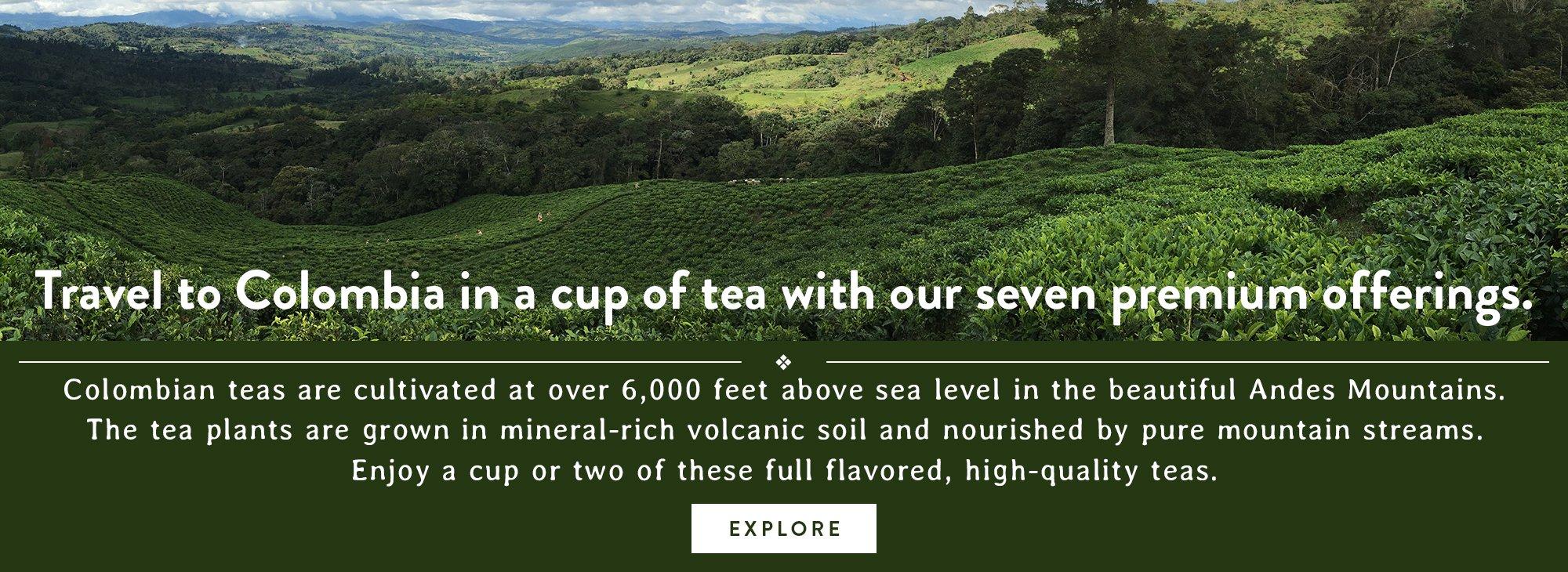 Discover Columbian Teas