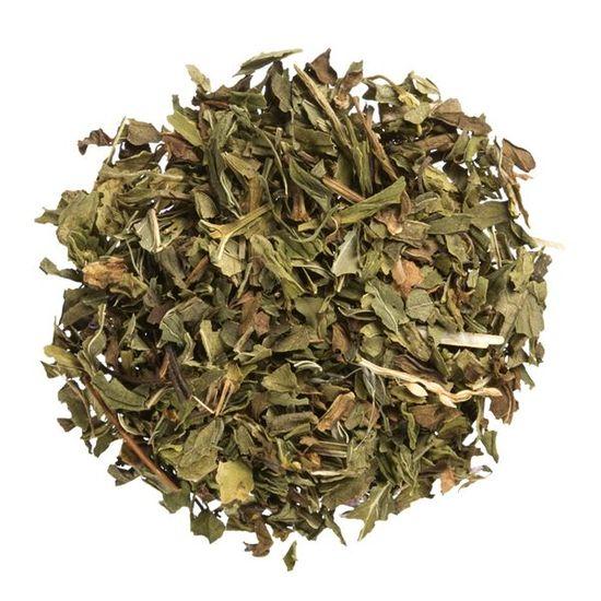 Spearmint organic loose leaf herbal tea