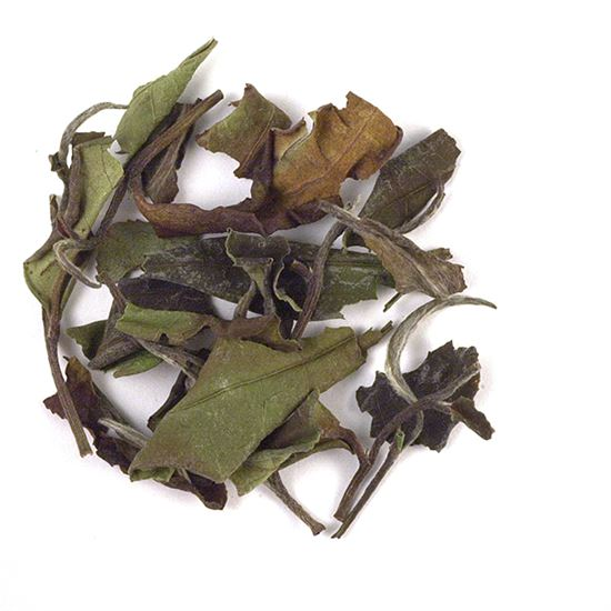 loose leaf Vietnamese white tea