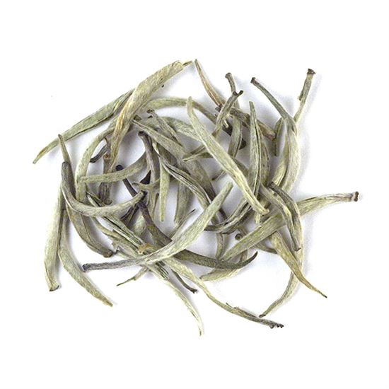 loose leaf Ceylon silver tips white tea