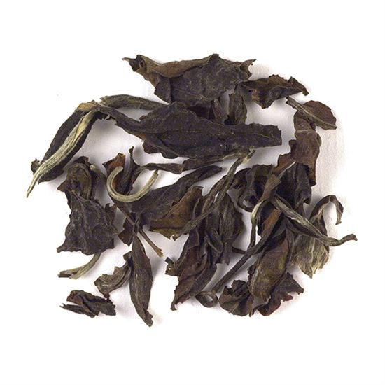 loose leaf Colombian white tea