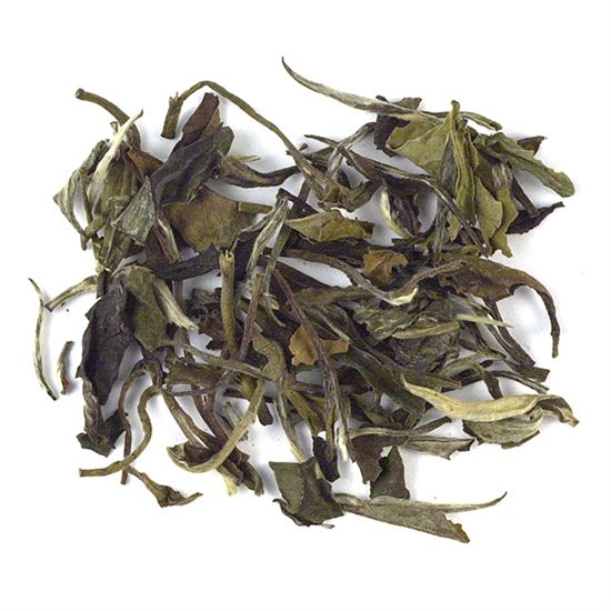 loose leaf white tea