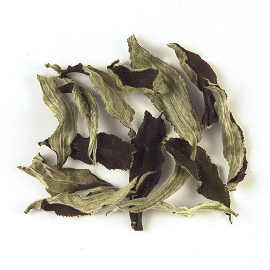 Ceylon loose leaf white tea